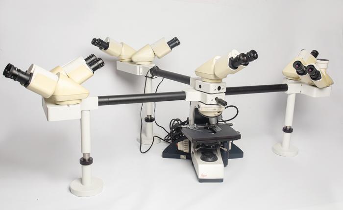 Leica DM LB2 Hydraheaded microscope