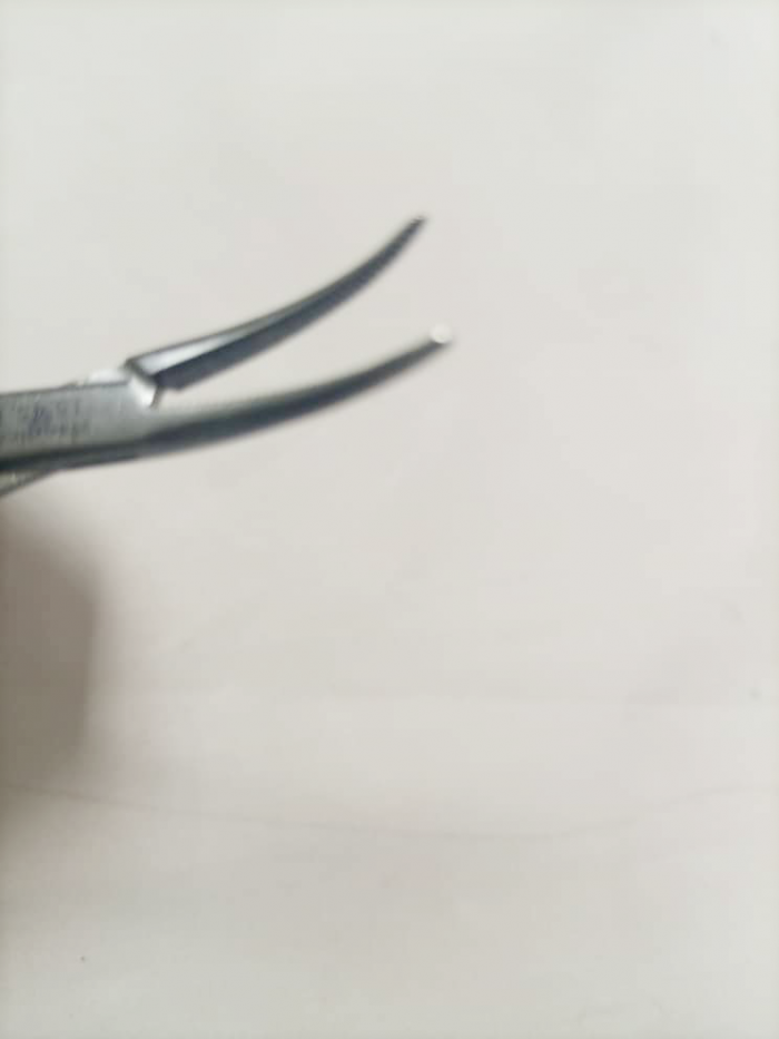 Halsted Mosquito Artery Forcep